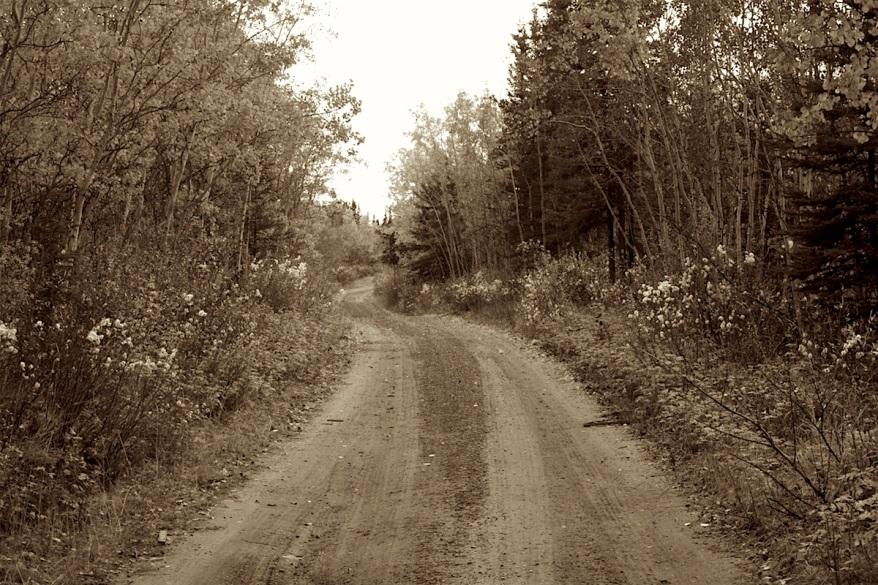 16-2812-bw-road