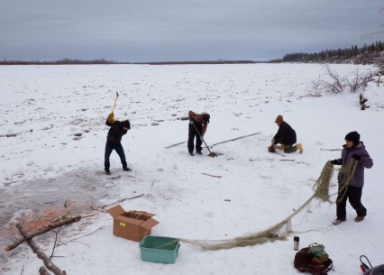 We try to cut three holes about 10 feet apart, but the ice is very thick and nearly impossible to cut through, so we stop at two.